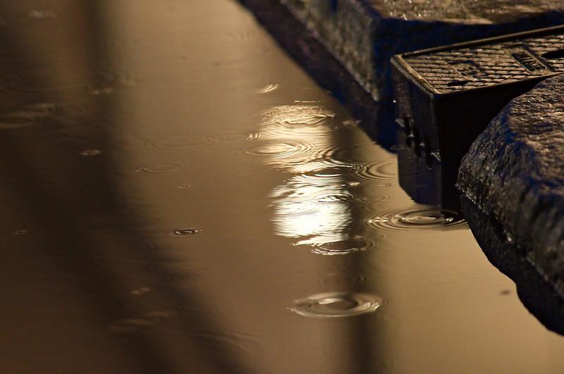 Reflets sous la pluie